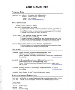 Example of a Resume CV