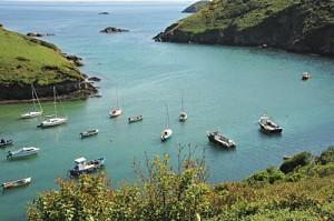 Safe Harbour for registered agents