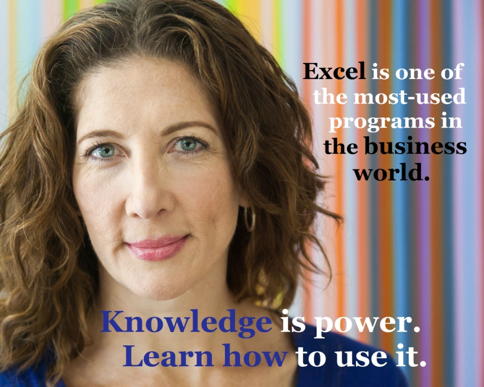 learn to use excel online training course videos cheap best