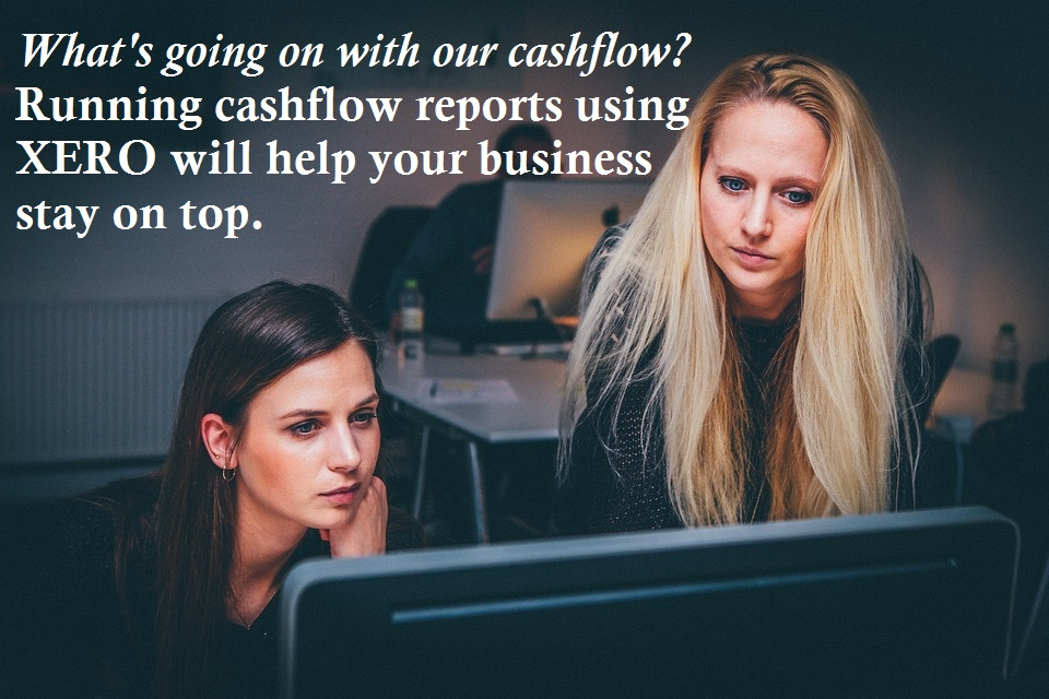 cashflow reports in xero and excel